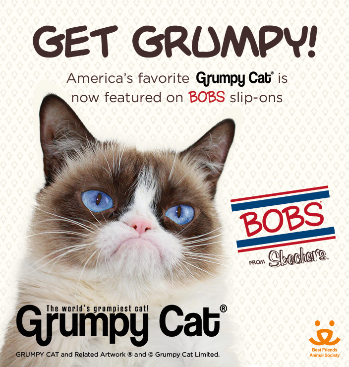 SKX32719-BOBS_X_GRUMPY_CAT_LANDING_PAGES_MainBanner_mobile_704x740_V2